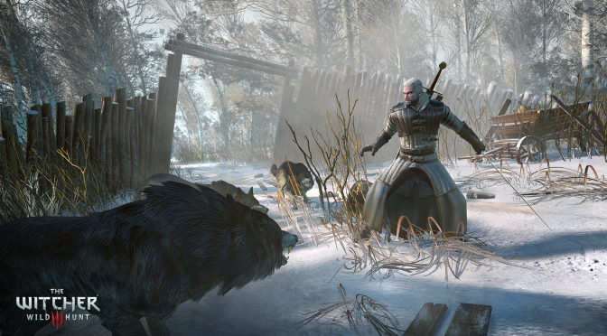 The Witcher 3 – several mods